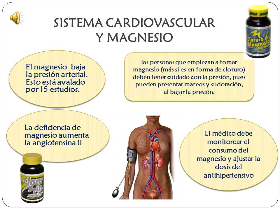 SISTEMA CARDIOVASCULAR Y MAGNESIO El magnesio baja la presión arterial.