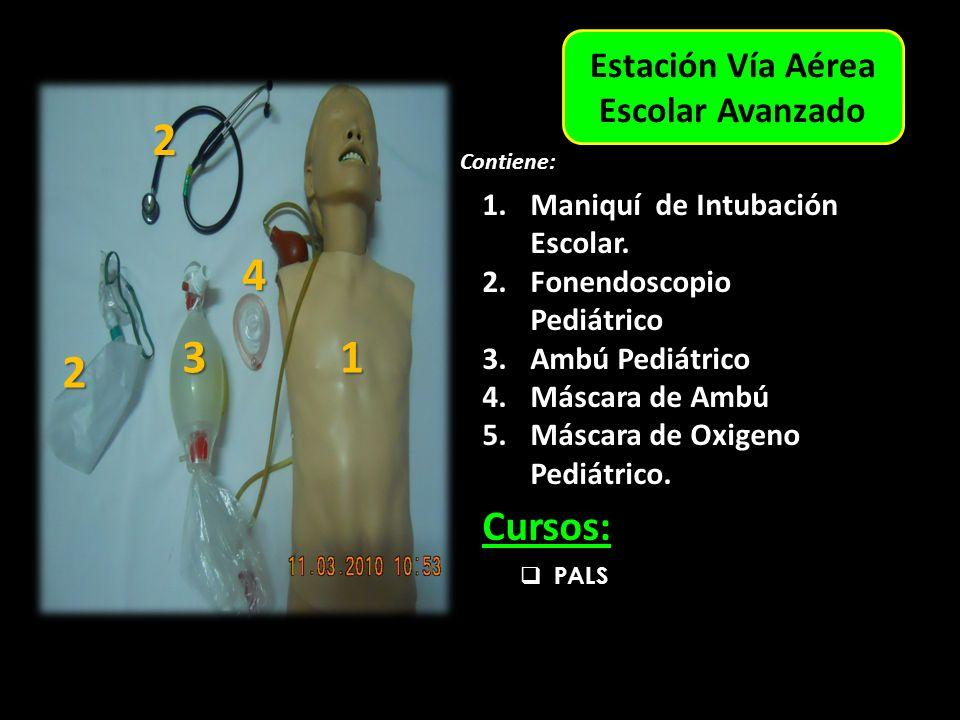 Estación Vía Aérea Escolar Avanzado Contiene: 1.Maniquí de Intubación Escolar.