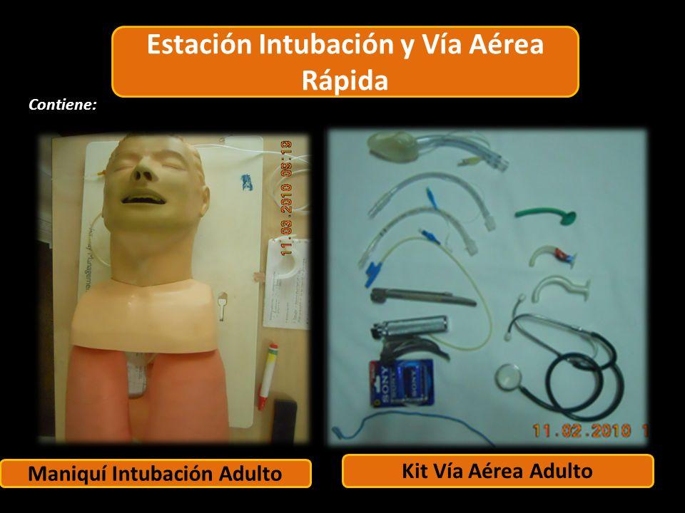 Estación Adulto Maniquí Intubación Adulto Contiene: 1 6 4 2 1 5 2 Kit Vía Aérea Adulto Estación Intubación y Vía Aérea Rápida