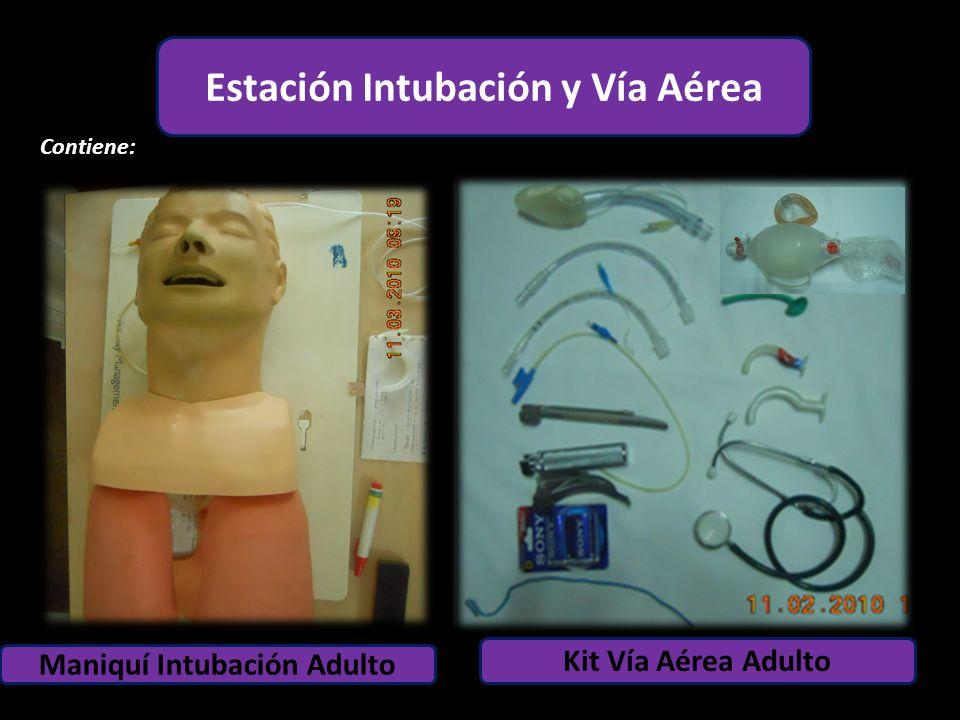 Estación Adulto Maniquí Intubación Adulto Contiene: 1 6 4 2 1 5 2 Kit Vía Aérea Adulto Estación Intubación y Vía Aérea