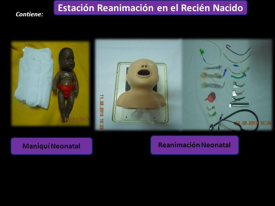 Estación Adulto Contiene: 1 3 6 5 4 2 Estación Reanimación en el Recién Nacido Maniquí Neonatal Reanimación Neonatal