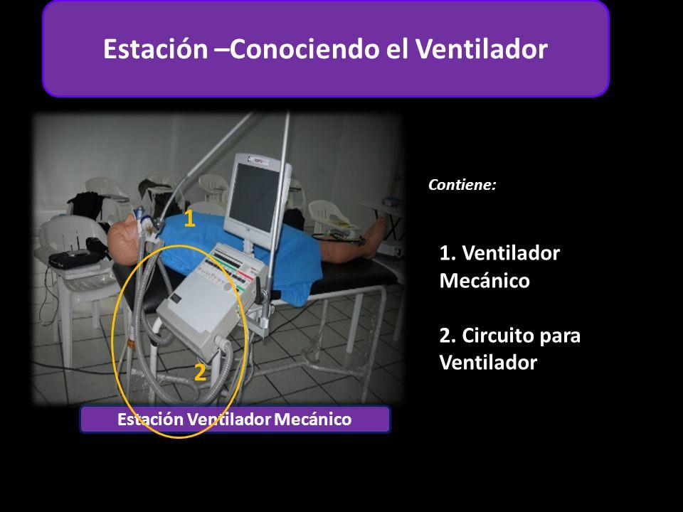 Estación Adulto Estación Ventilador Mecánico Contiene: 1 6 4 2 Estación –Conociendo el Ventilador 1.