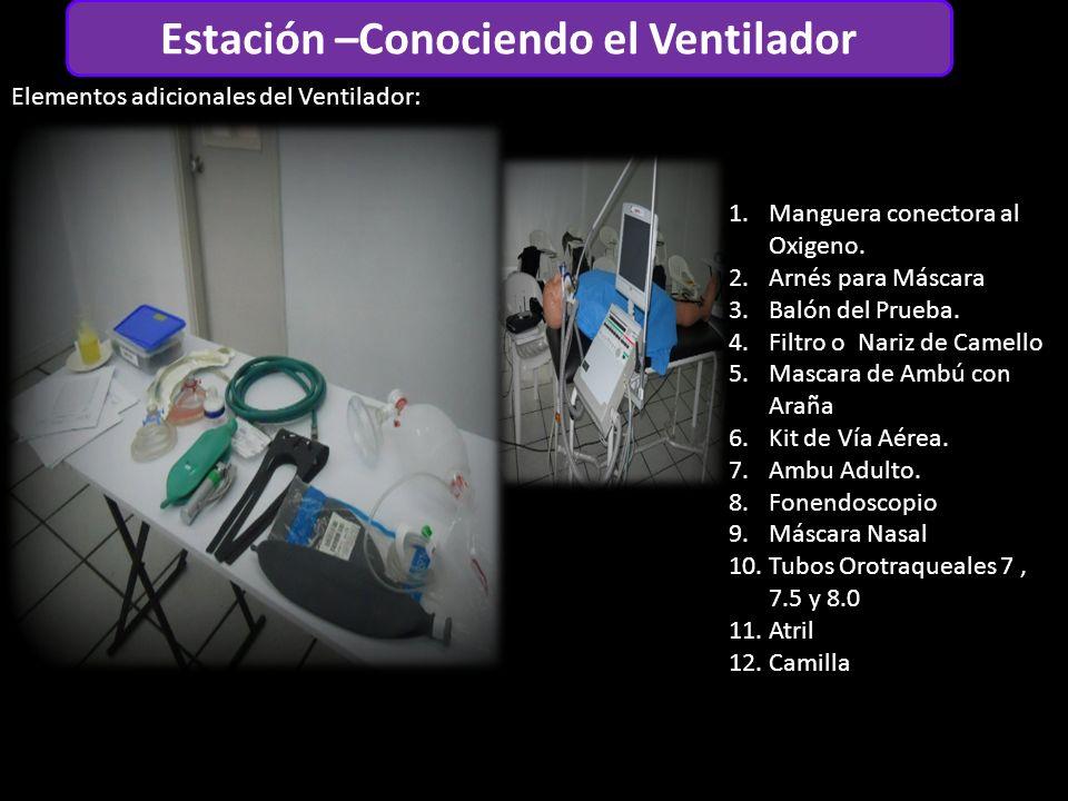 Estación –Conociendo el Ventilador Elementos adicionales del Ventilador: 1.Manguera conectora al Oxigeno.