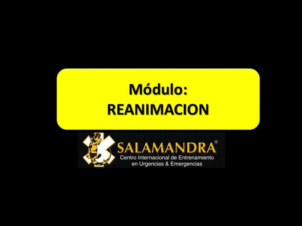 Módulo:REANIMACIONMódulo:REANIMACION