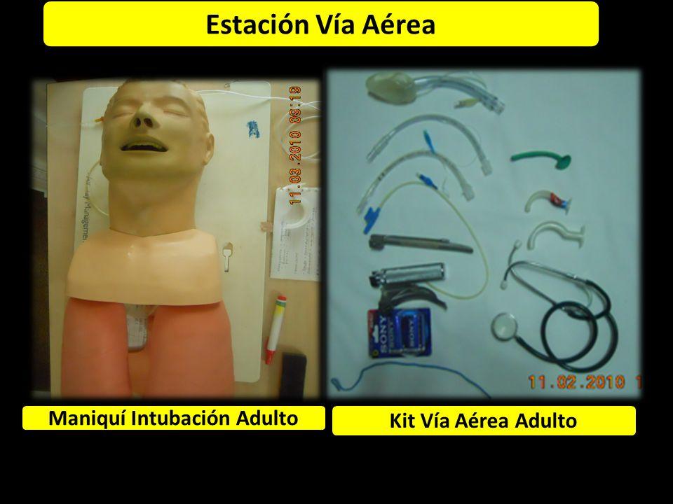 Estación Vía Aérea Maniquí Intubación Adulto Kit Vía Aérea Adulto