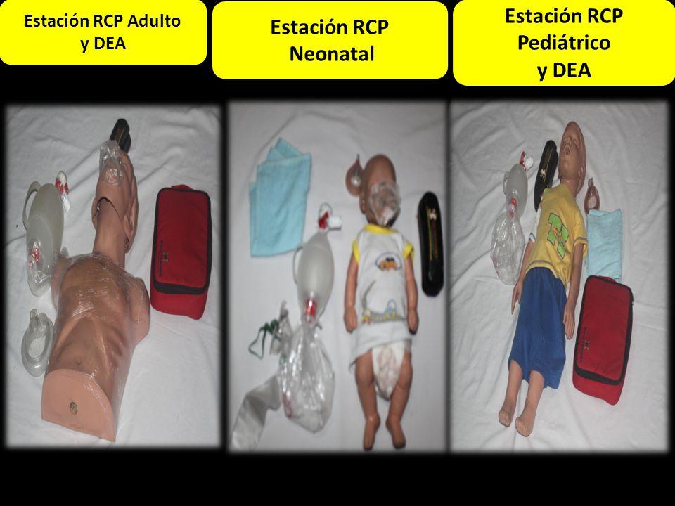 Estación Adulto Estación RCP Adulto y DEA Estación RCP Pediátrico y DEA Estación RCP Neonatal