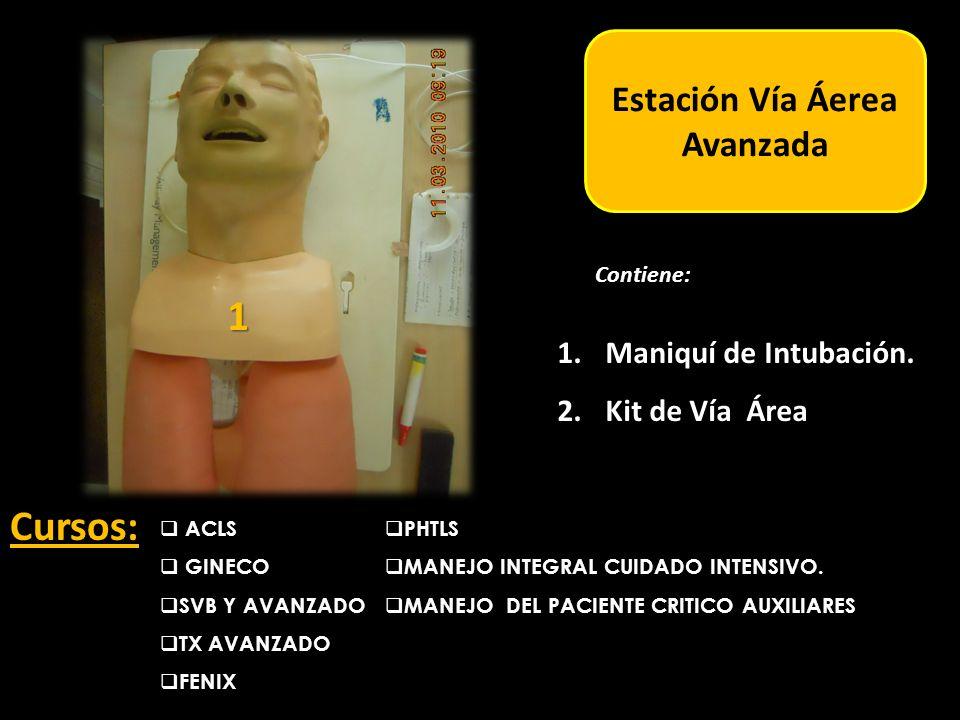 Estación Adulto Estación Vía Áerea Avanzada ACLS GINECO SVB Y AVANZADO TX AVANZADO FENIX Cursos: 1.Maniquí de Intubación.