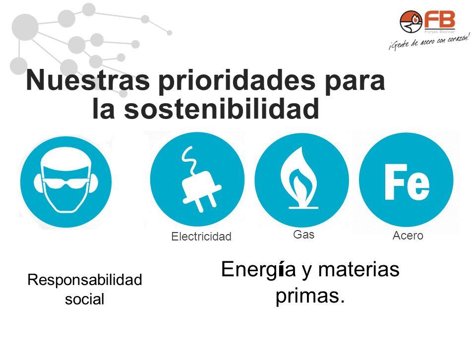 Nuestras prioridades para la sostenibilidad Responsabilidad social Energ í a y materias primas. Fe Electricidad Gas Acero