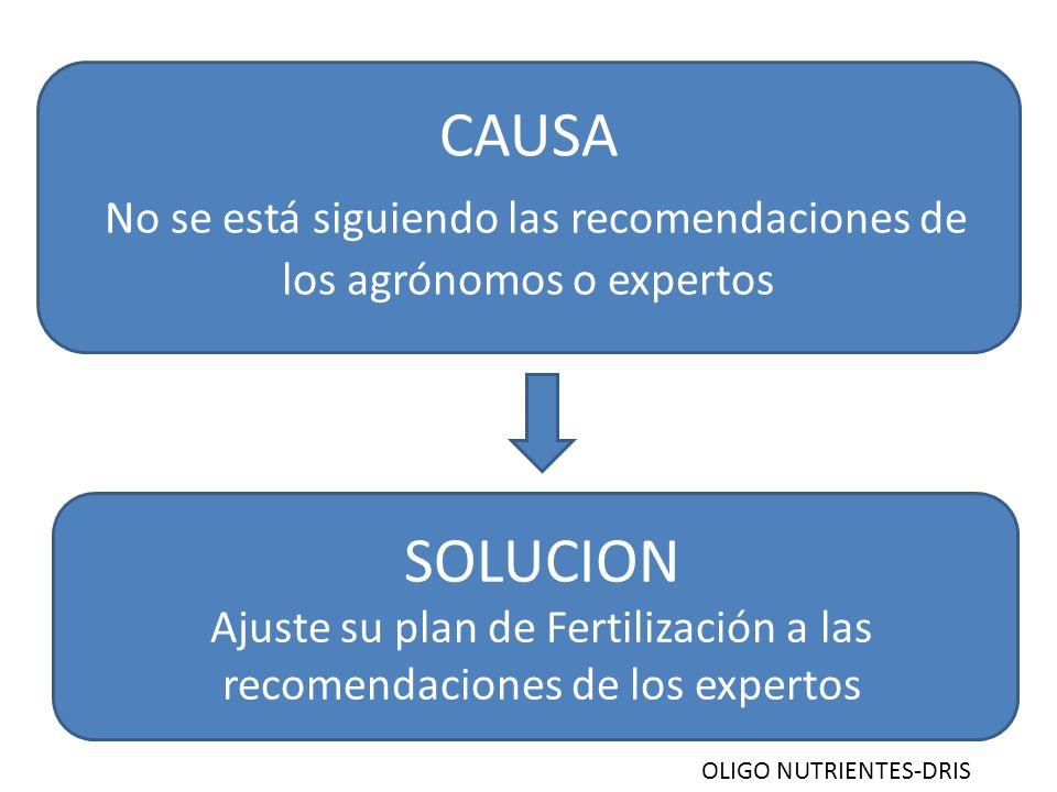 CAUSA No se está siguiendo las recomendaciones de los agrónomos o expertos SOLUCION Ajuste su plan de Fertilización a las recomendaciones de los exper