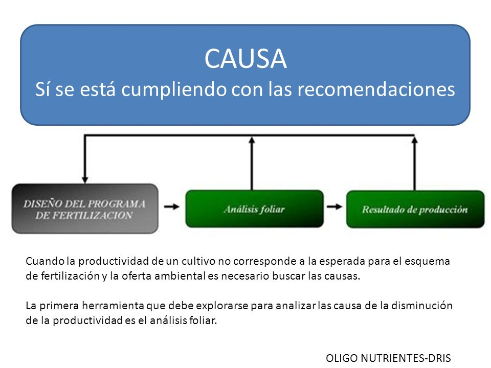 CAUSA Sí se está cumpliendo con las recomendaciones Cuando la productividad de un cultivo no corresponde a la esperada para el esquema de fertilización y la oferta ambiental es necesario buscar las causas.
