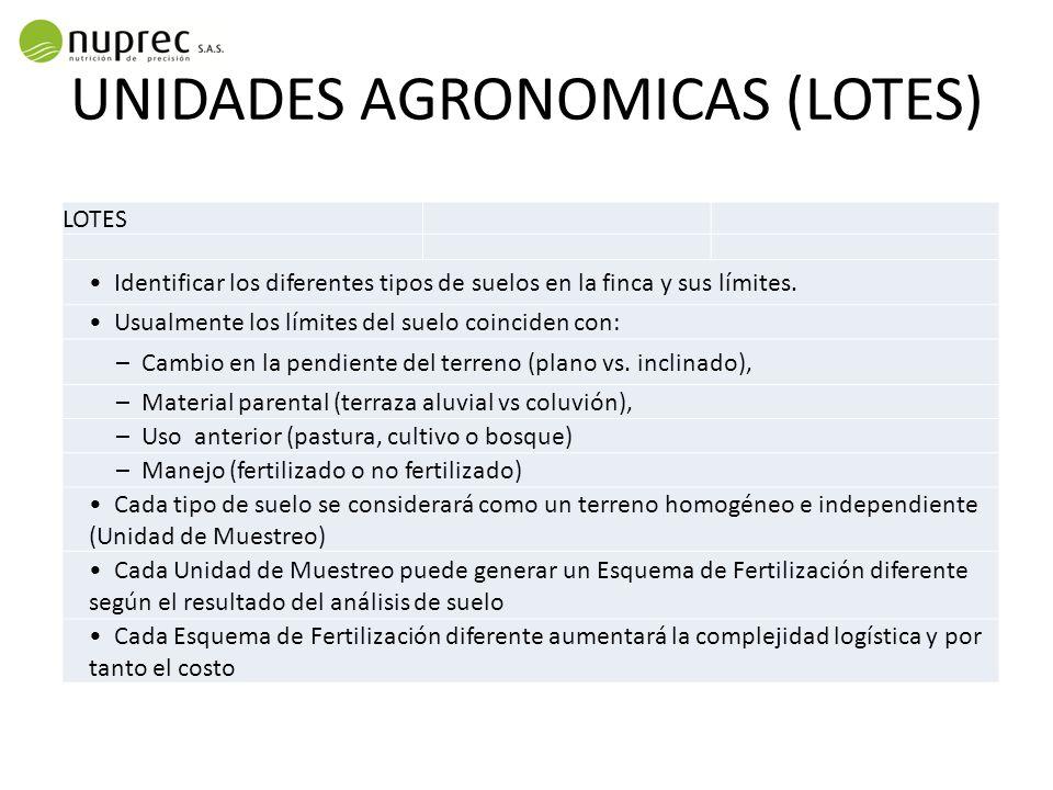 UNIDADES AGRONOMICAS (LOTES) LOTES Identificar los diferentes tipos de suelos en la finca y sus límites. Usualmente los límites del suelo coinciden co