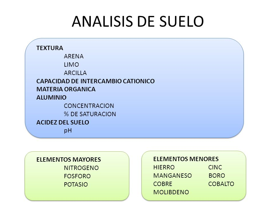 ANALISIS DE SUELO TEXTURA ARENA LIMO ARCILLA CAPACIDAD DE INTERCAMBIO CATIONICO MATERIA ORGANICA ALUMINIO CONCENTRACION % DE SATURACION ACIDEZ DEL SUELO pH ELEMENTOS MAYORES NITROGENO FOSFORO POTASIO ELEMENTOS MENORES HIERROCINC MANGANESO BORO COBRECOBALTO MOLIBDENO