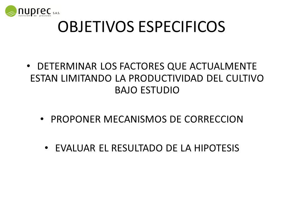 OBJETIVOS ESPECIFICOS DETERMINAR LOS FACTORES QUE ACTUALMENTE ESTAN LIMITANDO LA PRODUCTIVIDAD DEL CULTIVO BAJO ESTUDIO PROPONER MECANISMOS DE CORRECCION EVALUAR EL RESULTADO DE LA HIPOTESIS