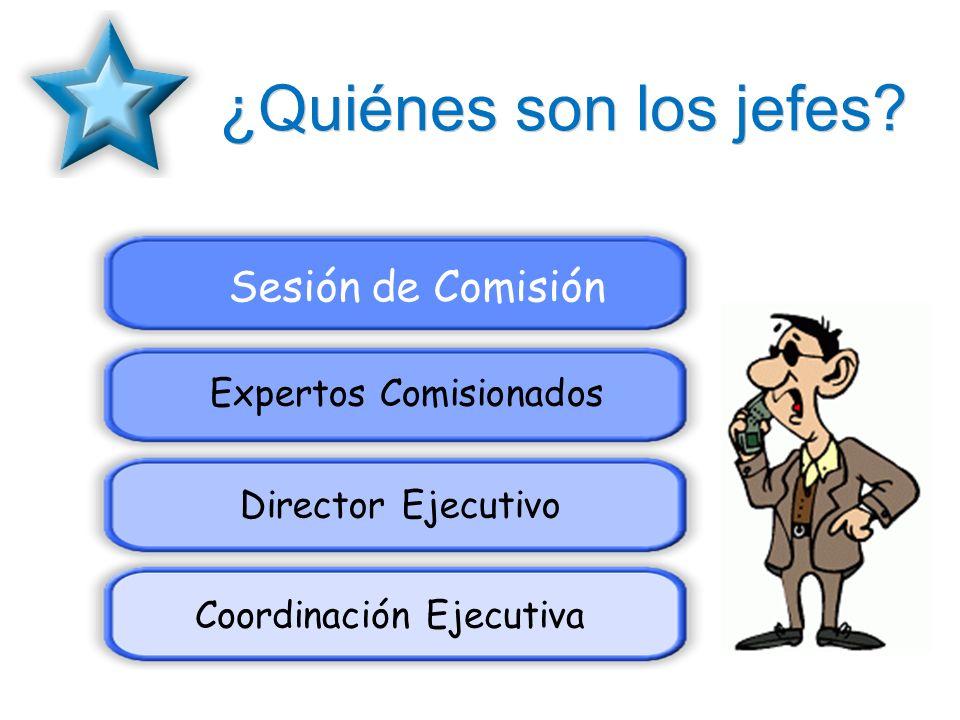 ¿Quiénes son los jefes? Sesión de Comisión Expertos Comisionados Director Ejecutivo Coordinación Ejecutiva