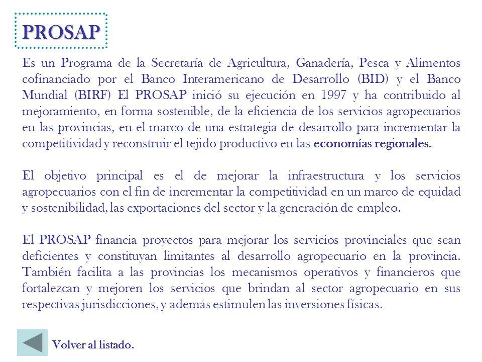 Es un Programa de la Secretaría de Agricultura, Ganadería, Pesca y Alimentos cofinanciado por el Banco Interamericano de Desarrollo (BID) y el Banco Mundial (BIRF) El PROSAP inició su ejecución en 1997 y ha contribuido al mejoramiento, en forma sostenible, de la eficiencia de los servicios agropecuarios en las provincias, en el marco de una estrategia de desarrollo para incrementar la competitividad y reconstruir el tejido productivo en las economías regionales.