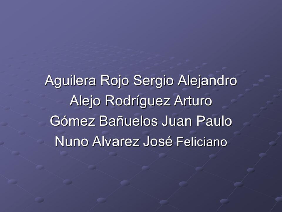 Aguilera Rojo Sergio Alejandro Alejo Rodríguez Arturo Gómez Bañuelos Juan Paulo Nuno Alvarez José Feliciano