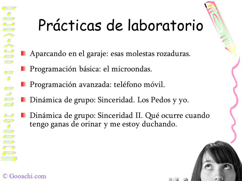 © Gooachi.com Prácticas de laboratorio Aparcando en el garaje: esas molestas rozaduras. Programación básica: el microondas. Programación avanzada: tel