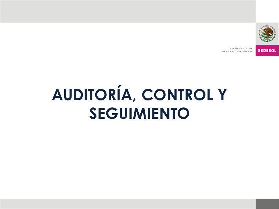 AUDITORÍA, CONTROL Y SEGUIMIENTO