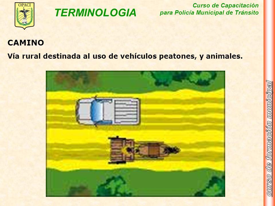 Curso de Capacitación para Policía Municipal de Tránsito TERMINOLOGIA CAMINO Vía rural destinada al uso de vehículos peatones, y animales.