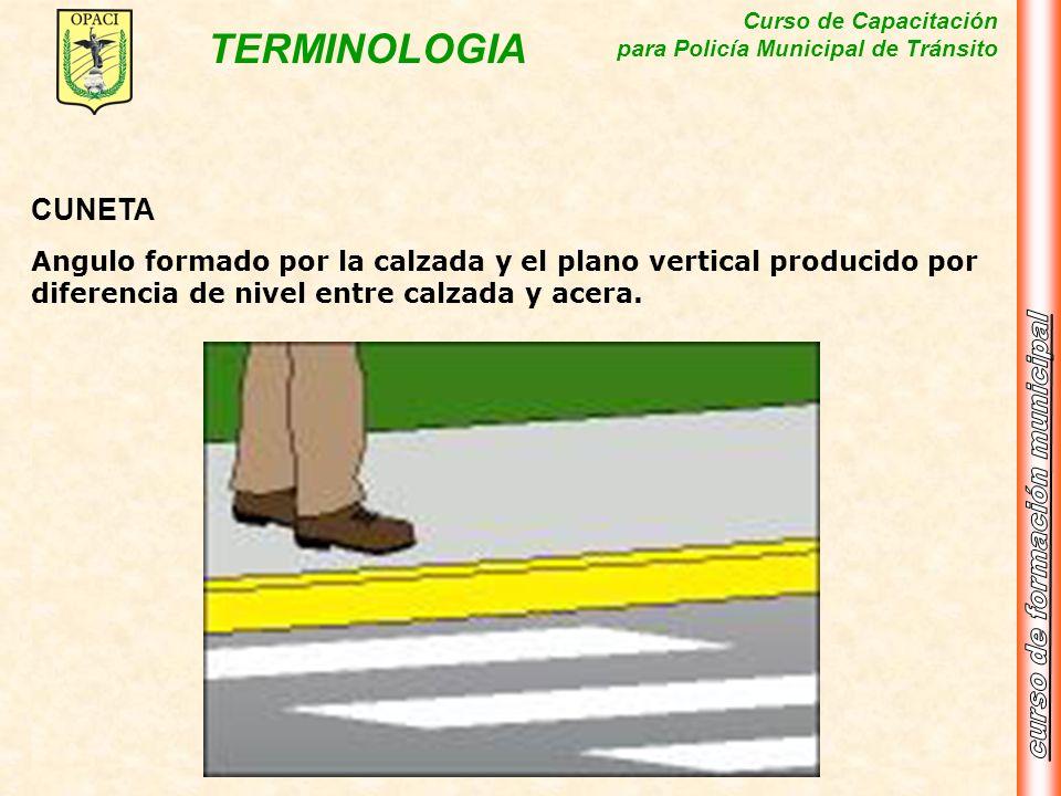 Curso de Capacitación para Policía Municipal de Tránsito TERMINOLOGIA CUNETA Angulo formado por la calzada y el plano vertical producido por diferenci