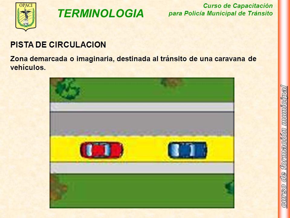 Curso de Capacitación para Policía Municipal de Tránsito TERMINOLOGIA PISTA DE CIRCULACION Zona demarcada o imaginaria, destinada al tránsito de una c