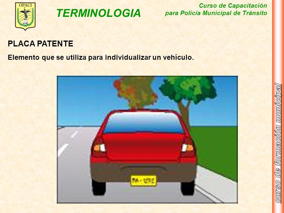 Curso de Capacitación para Policía Municipal de Tránsito TERMINOLOGIA PLACA PATENTE Elemento que se utiliza para individualizar un vehículo.