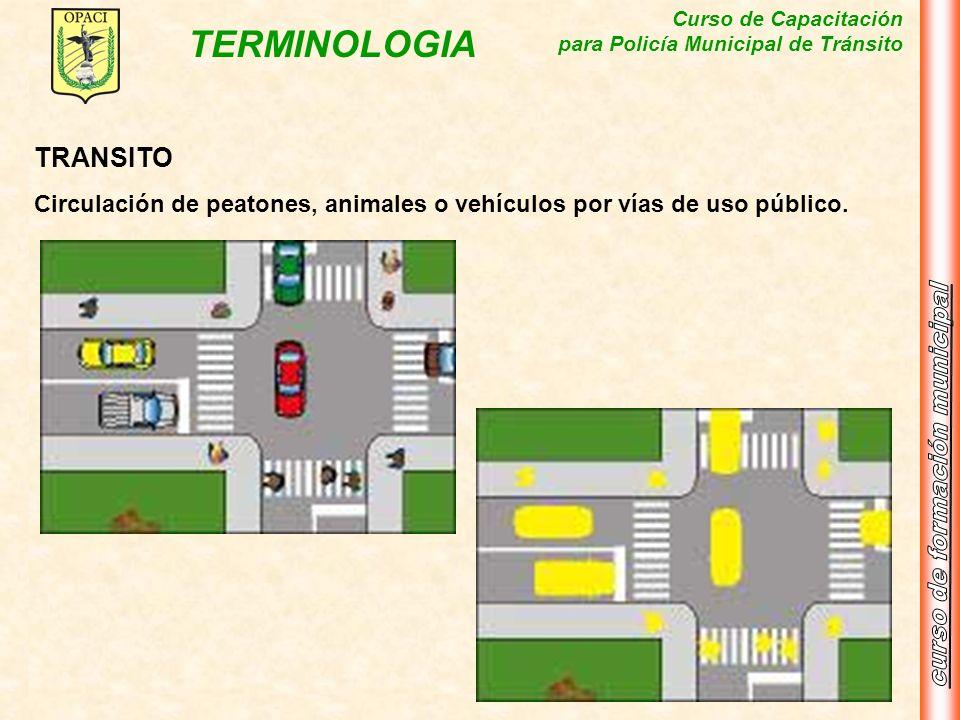Curso de Capacitación para Policía Municipal de Tránsito TERMINOLOGIA TRANSITO Circulación de peatones, animales o vehículos por vías de uso público.