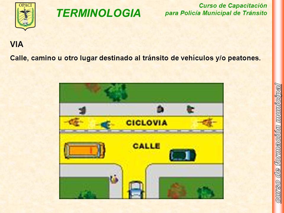 Curso de Capacitación para Policía Municipal de Tránsito TERMINOLOGIA VIA Calle, camino u otro lugar destinado al tránsito de vehículos y/o peatones.