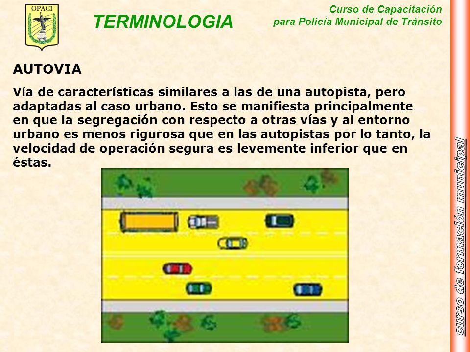 Curso de Capacitación para Policía Municipal de Tránsito TERMINOLOGIA AUTOVIA Vía de características similares a las de una autopista, pero adaptadas