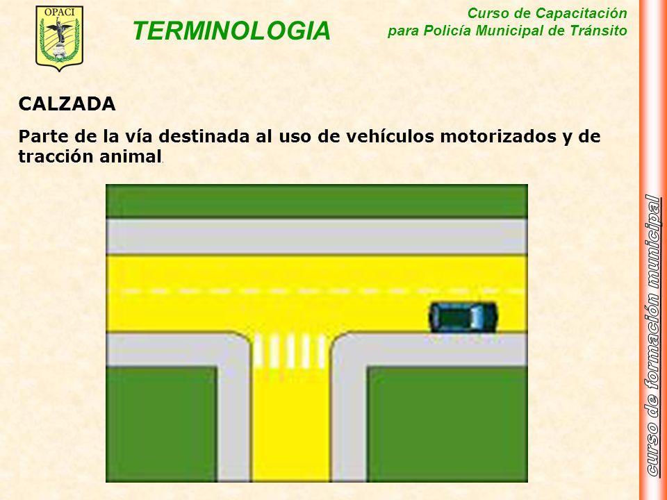 Curso de Capacitación para Policía Municipal de Tránsito TERMINOLOGIA CALZADA Parte de la vía destinada al uso de vehículos motorizados y de tracción