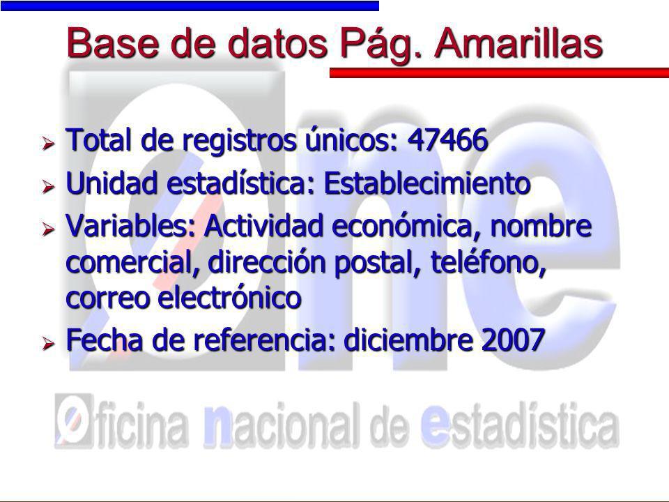 Base de datos Pág. Amarillas Total de registros únicos: 47466 Total de registros únicos: 47466 Unidad estadística: Establecimiento Unidad estadística: