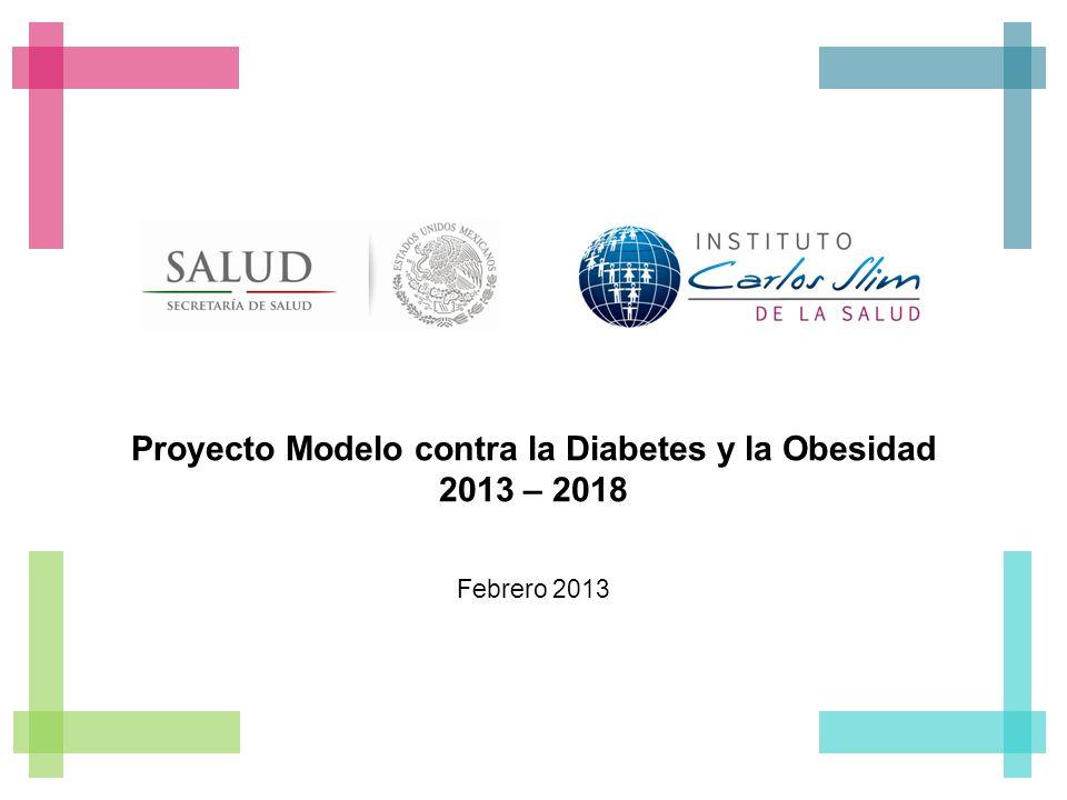 Proyecto Modelo contra la Diabetes y la Obesidad 2013 – 2018 Febrero 2013