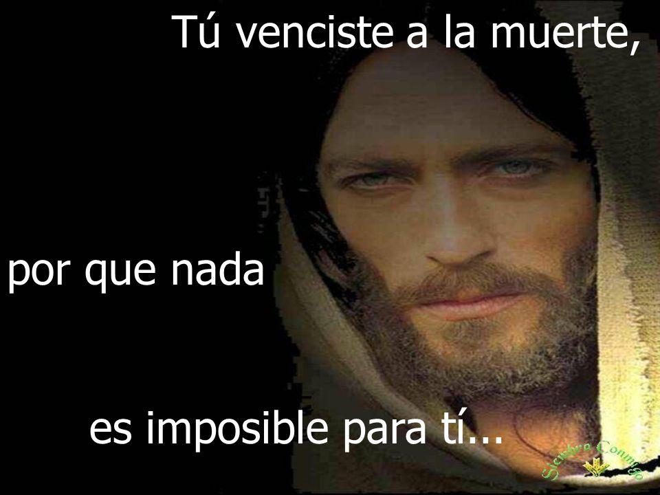 Tú venciste a la muerte, por que nada es imposible para tí...