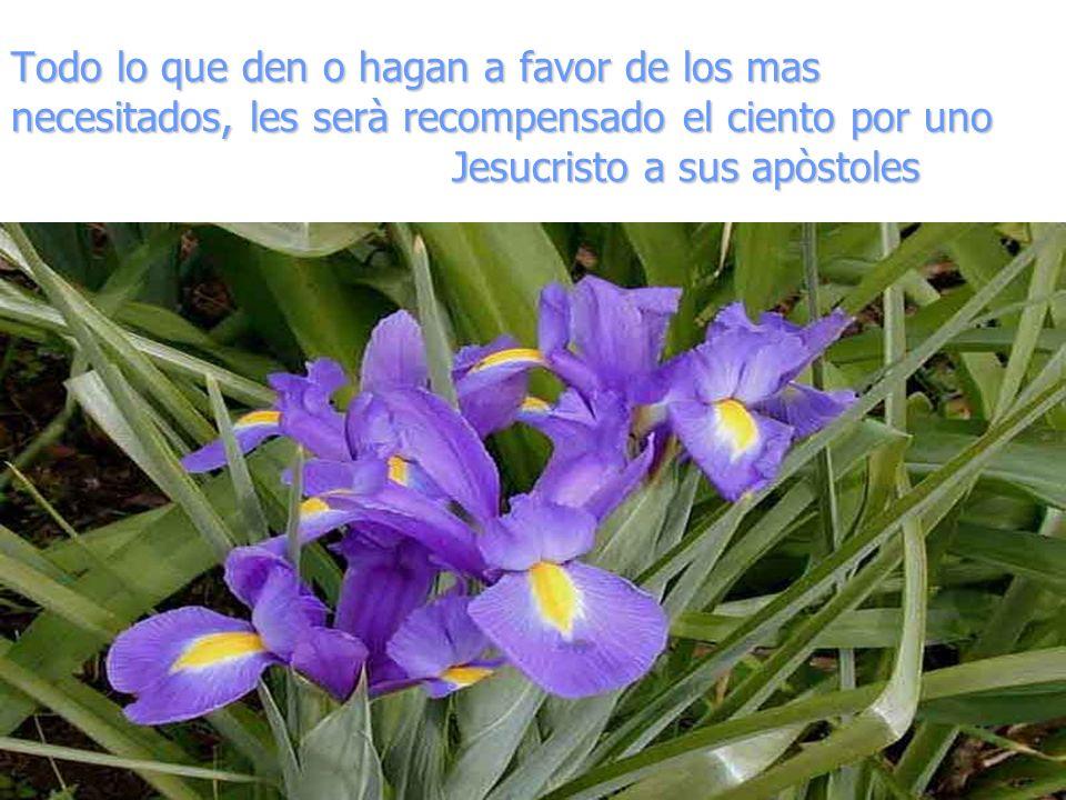Todo lo que den o hagan a favor de los mas necesitados, les serà recompensado el ciento por uno Jesucristo a sus apòstoles