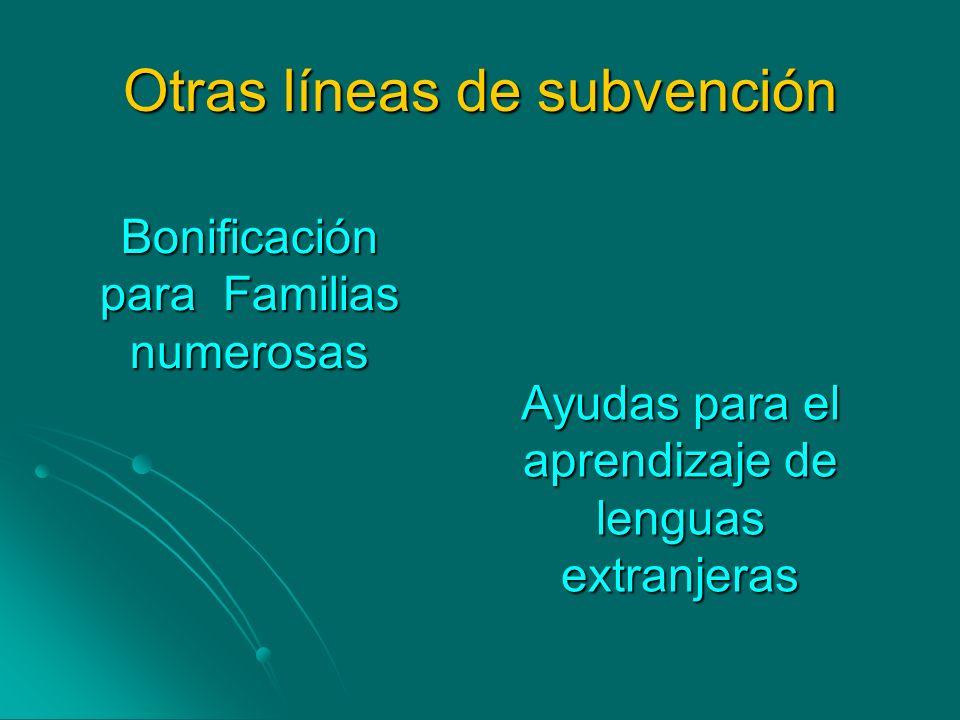 Otras líneas de subvención Bonificación para Familias numerosas Ayudas para el aprendizaje de lenguas extranjeras