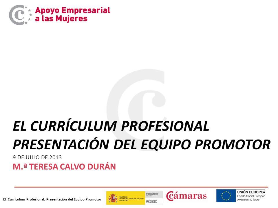 El Currículum Profesional. Presentación del Equipo Promotor EL CURRÍCULUM PROFESIONAL PRESENTACIÓN DEL EQUIPO PROMOTOR 9 DE JULIO DE 2013 M.ª TERESA C