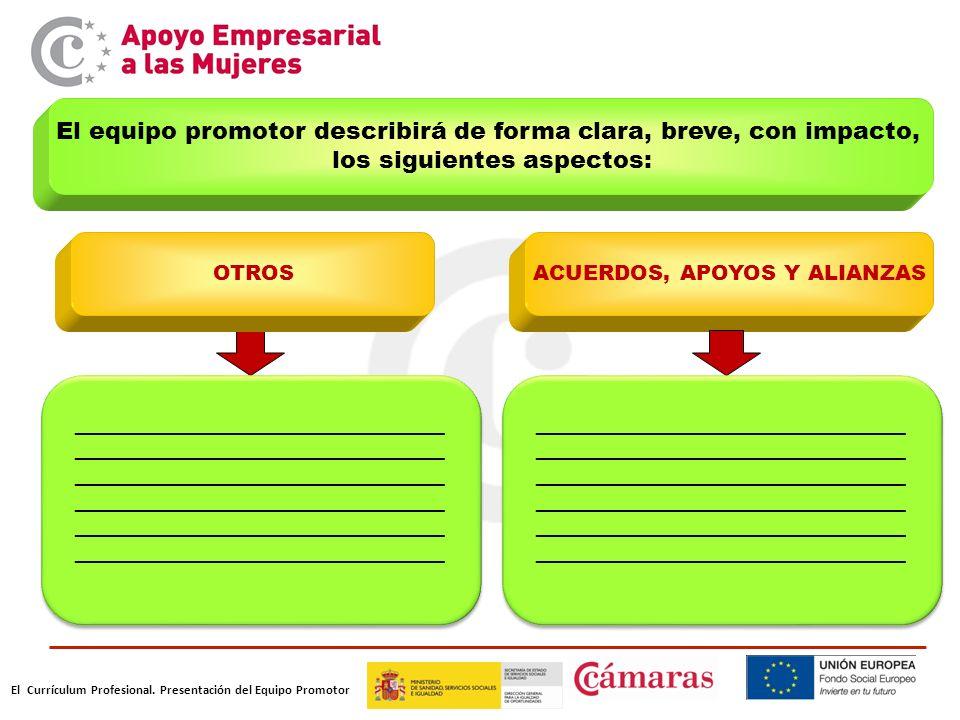 El Currículum Profesional. Presentación del Equipo Promotor El equipo promotor describirá de forma clara, breve, con impacto, los siguientes aspectos: