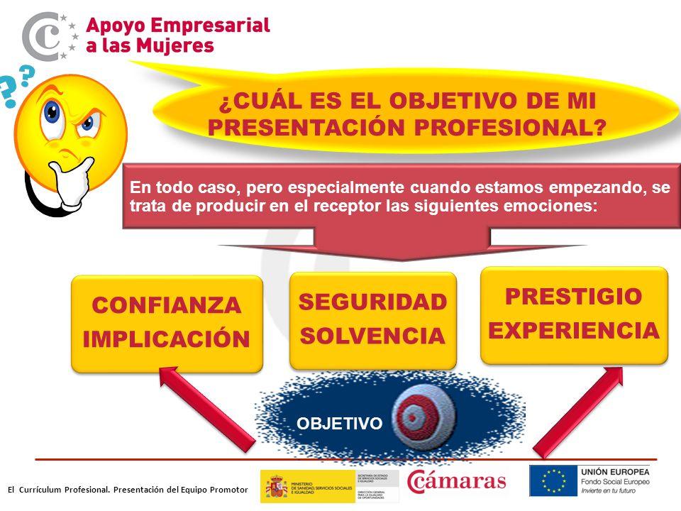 El Currículum Profesional.