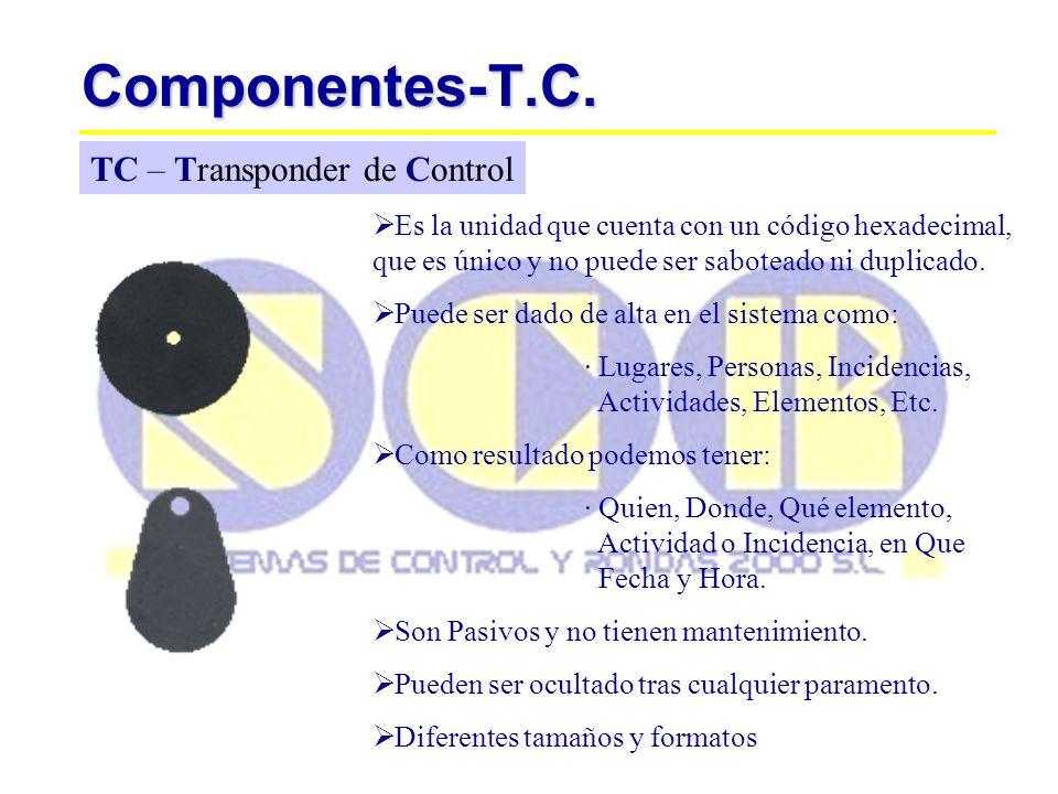 Componentes-T.C.