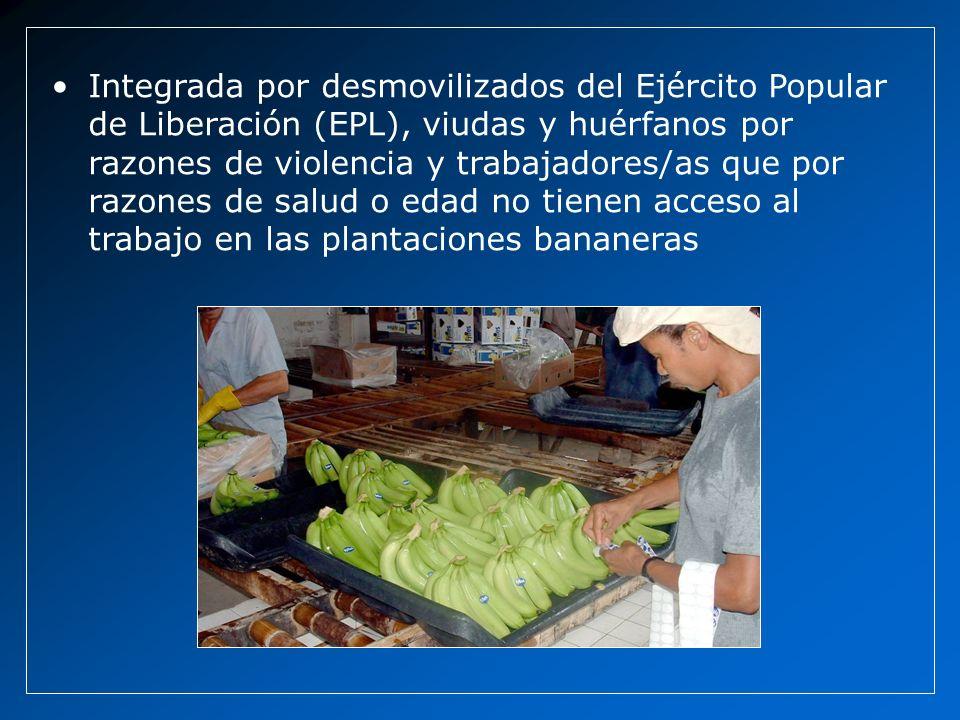 Integrada por desmovilizados del Ejército Popular de Liberación (EPL), viudas y huérfanos por razones de violencia y trabajadores/as que por razones d