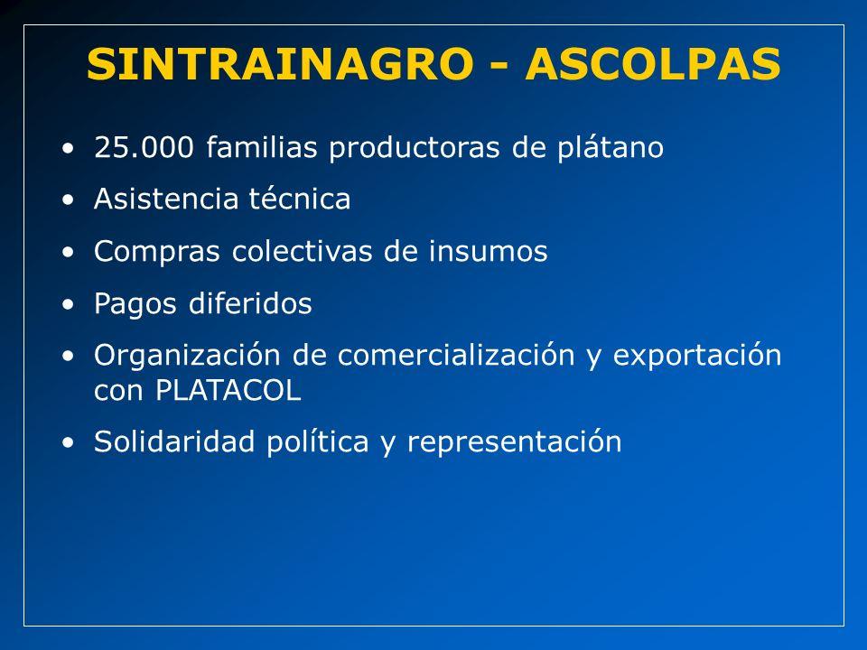 25.000 familias productoras de plátano Asistencia técnica Compras colectivas de insumos Pagos diferidos Organización de comercialización y exportación con PLATACOL Solidaridad política y representación