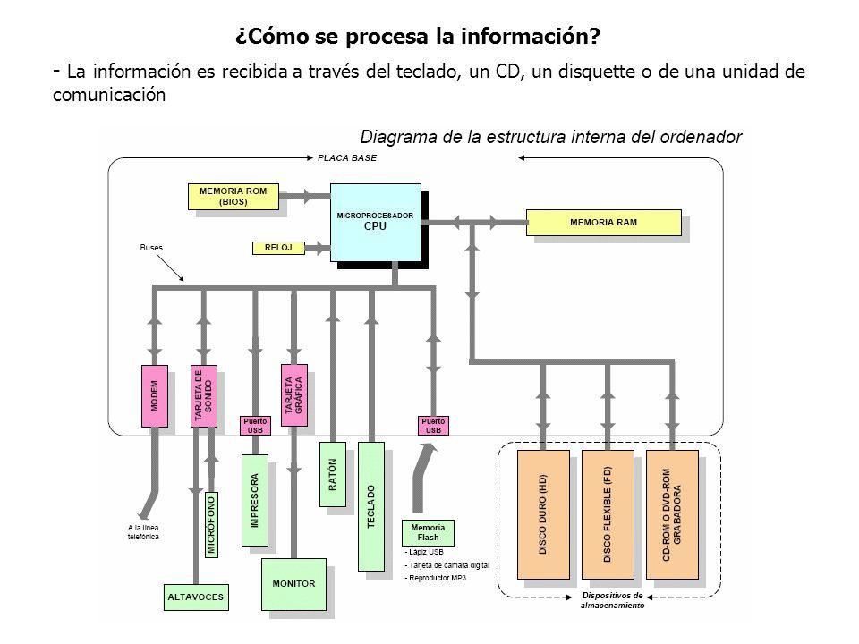 ¿Cómo se procesa la información? - La información es recibida a través del teclado, un CD, un disquette o de una unidad de comunicación