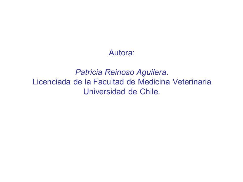 Autora: Patricia Reinoso Aguilera. Licenciada de la Facultad de Medicina Veterinaria Universidad de Chile.