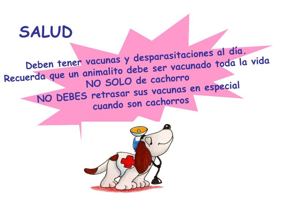SALUD Deben tener vacunas y desparasitaciones al día. Recuerda que un animalito debe ser vacunado toda la vida NO SOLO de cachorro NO DEBES retrasar s
