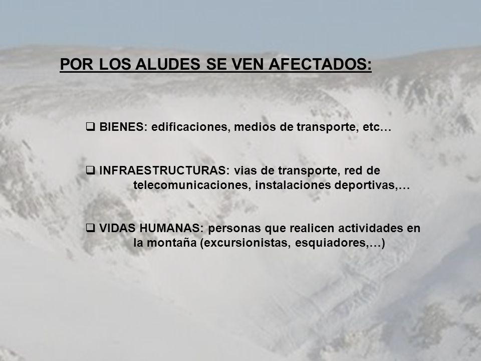 POR LOS ALUDES SE VEN AFECTADOS: BIENES: edificaciones, medios de transporte, etc… INFRAESTRUCTURAS: vias de transporte, red de telecomunicaciones, in