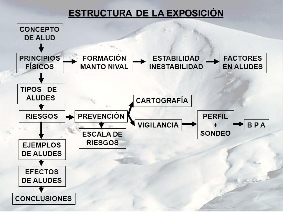 DEPÓSITO DE UN ALUD DE FUSIÓN