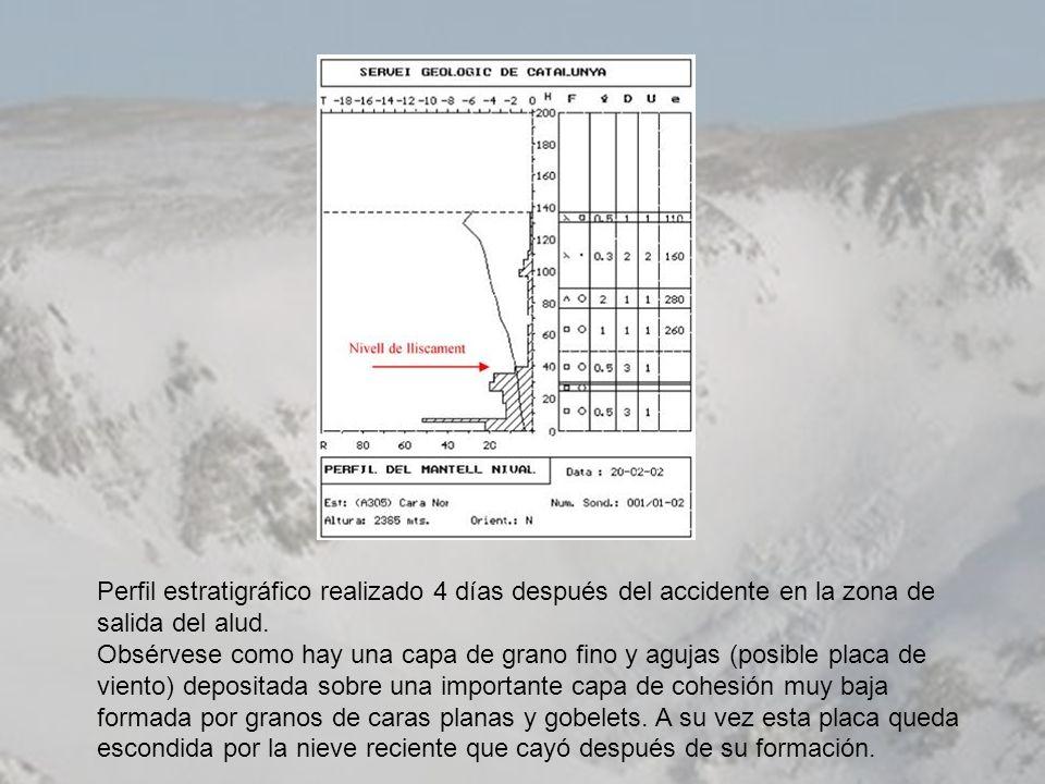 Perfil estratigráfico realizado 4 días después del accidente en la zona de salida del alud. Obsérvese como hay una capa de grano fino y agujas (posibl