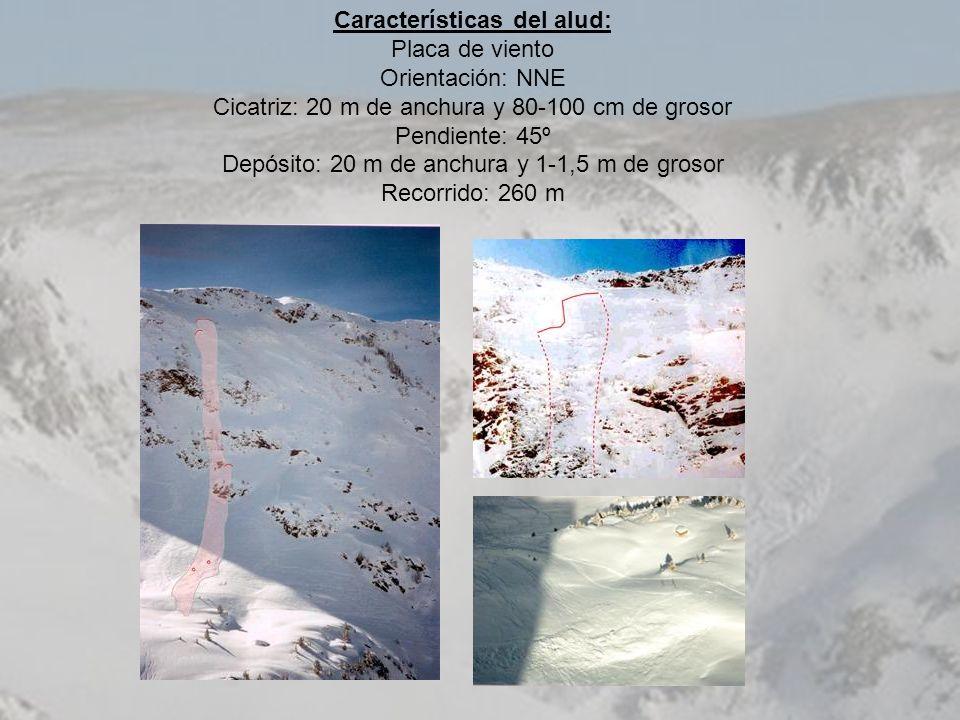 Características del alud: Placa de viento Orientación: NNE Cicatriz: 20 m de anchura y 80-100 cm de grosor Pendiente: 45º Depósito: 20 m de anchura y