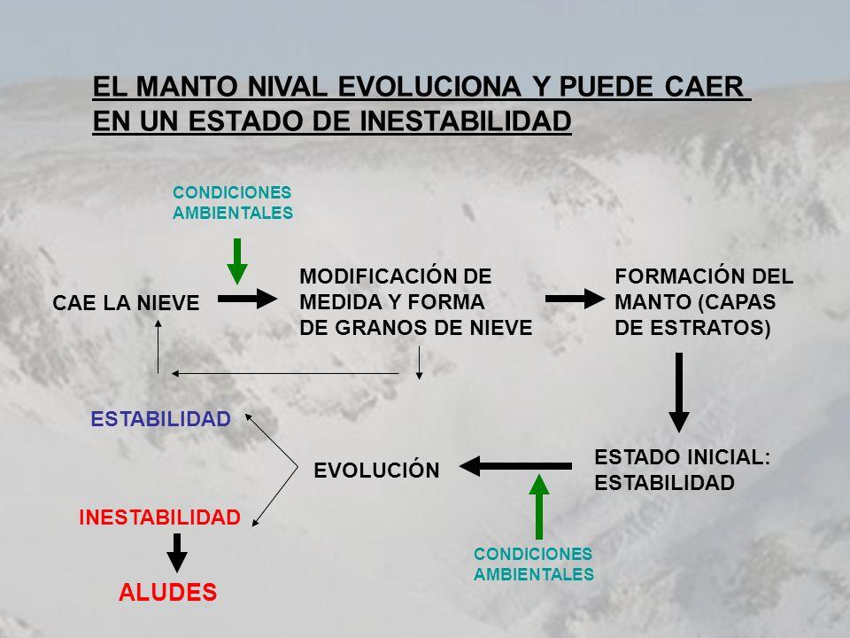 Situación nivometeorológica: METEOROLOGÍA: - 15/02/02: nevadas moderadas, con gruesos de nieve reciente acumulados entre 15 i 20 cm.