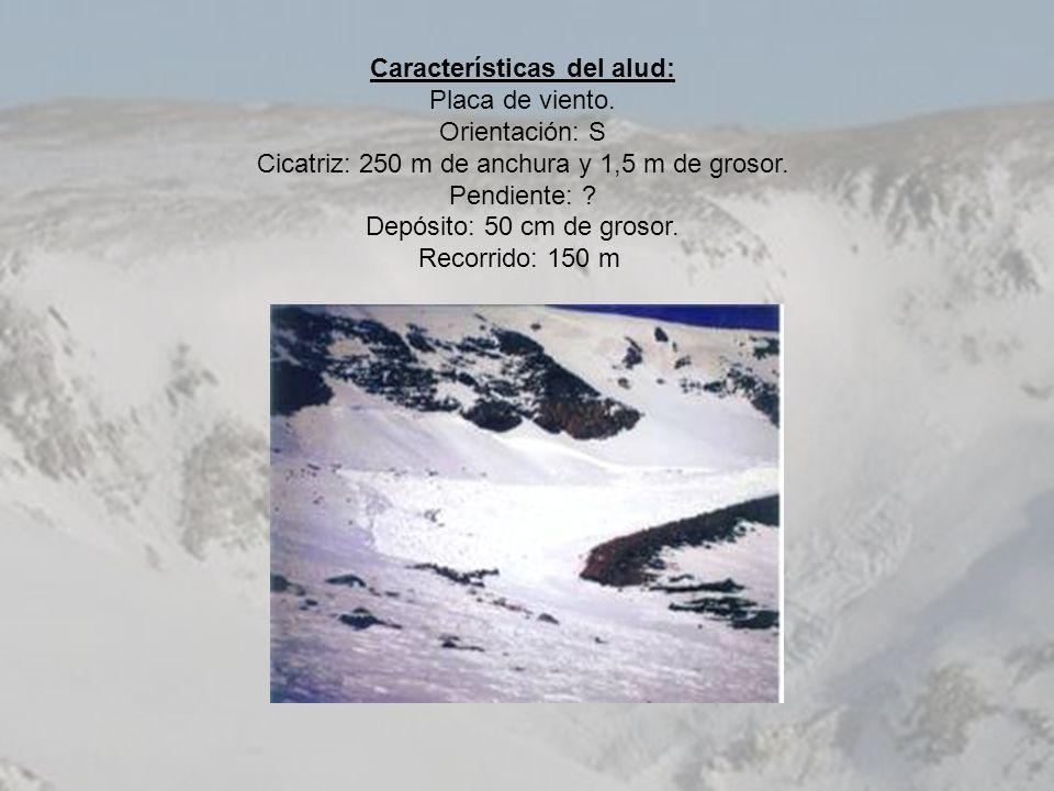 Características del alud: Placa de viento. Orientación: S Cicatriz: 250 m de anchura y 1,5 m de grosor. Pendiente: ? Depósito: 50 cm de grosor. Recorr